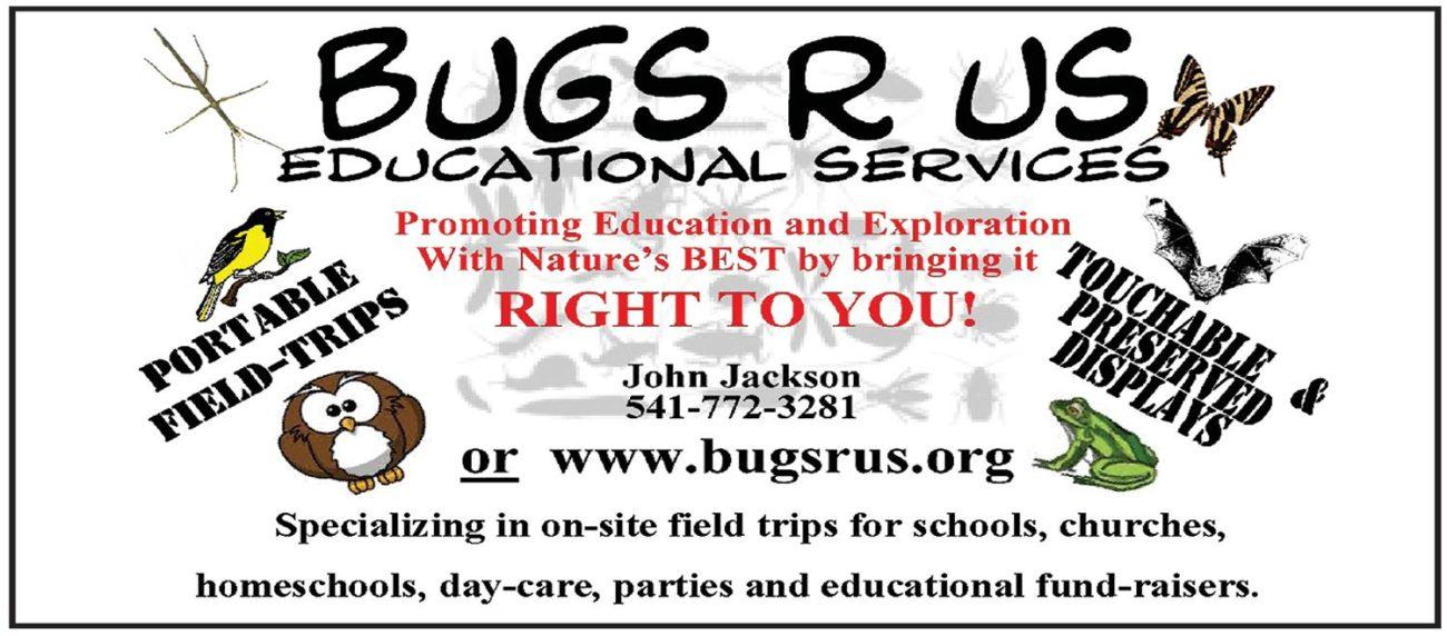Bug R Us 8-16