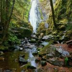 A Drizzly Day at Susan Creek Falls, Oregon