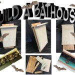 Order Your ~Build a Bat House- Stem Kit~ from BugsRUs